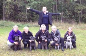 Från vänster: Sixten, Ilo, Khira, Tindra och Silver. Foto: Lena Johansson